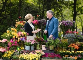 A Day in the Life: Gary Graham, Bord Bia Bloom Manager