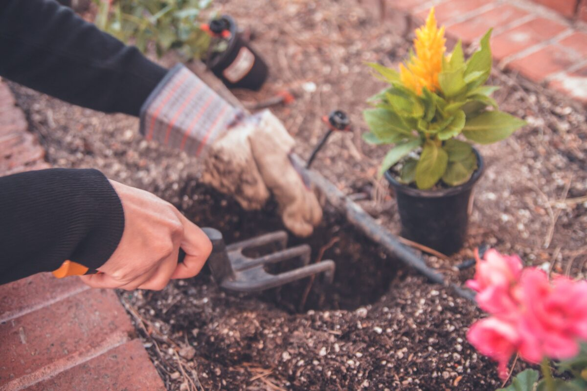 Easy Ways of Getting Started in the Garden