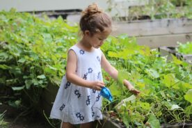 Tips to Get Kids Interested in Gardening